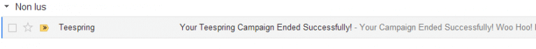 successful email campaign on TeeSpring